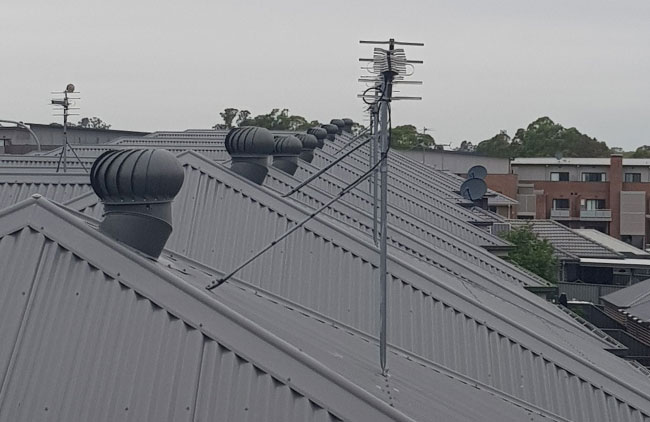 MAESTRO BAL Ventilator